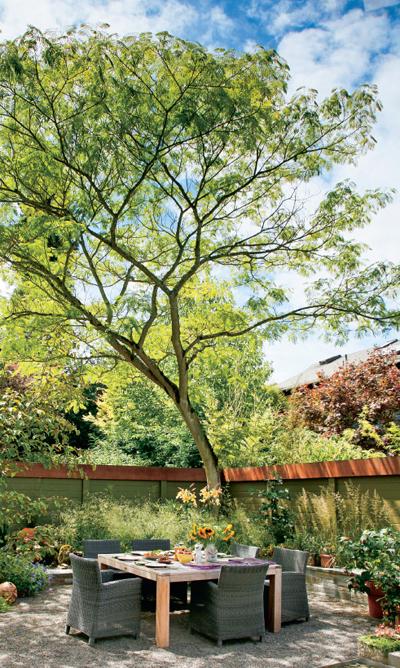 一本の木がポイント