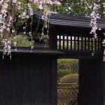 モダンな印象を与える黒い塀を使うなら柿から作った伝統技法があります