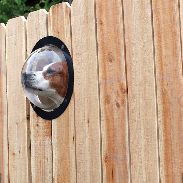 ペット用フェンス窓1