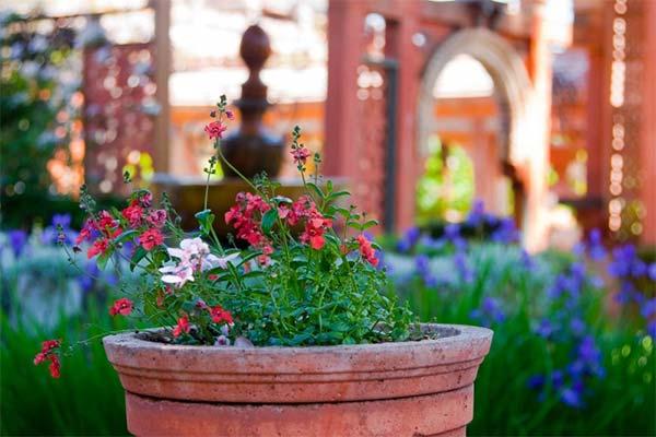 フランスにある秘密の庭園2