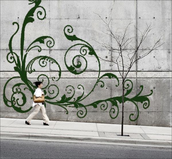 苔のアートモスグラフィティ2