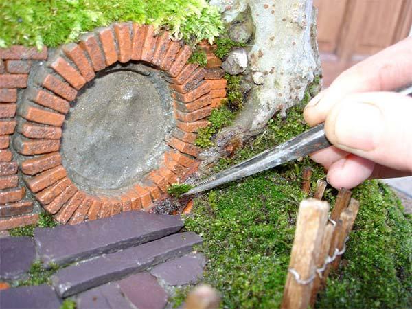 盆栽とエルフの融合苔付け